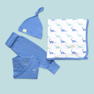 Welcome Baby! Bundle - Rawr Lil Dinosaur