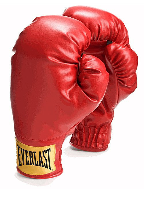 Everlast Laceless Boxing Training Gloves