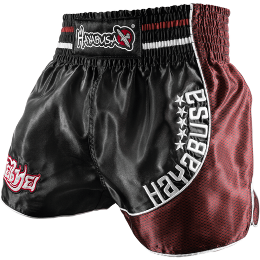 Hayabusa Lion Warrior Muay Thai Shorts - Hatashita