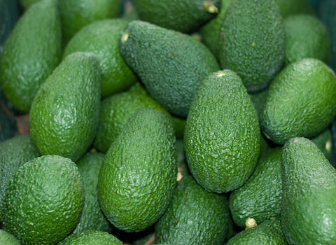 Avocado Hass Biologici
