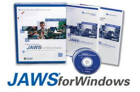 JAWS Professional 2021 - English Single User License. Download only.