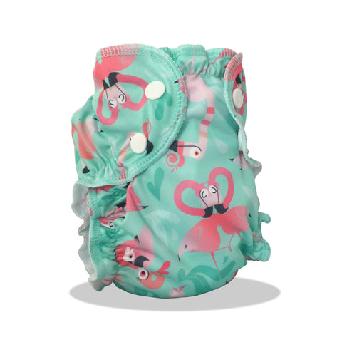Washable Swim Diaper - Flamingle