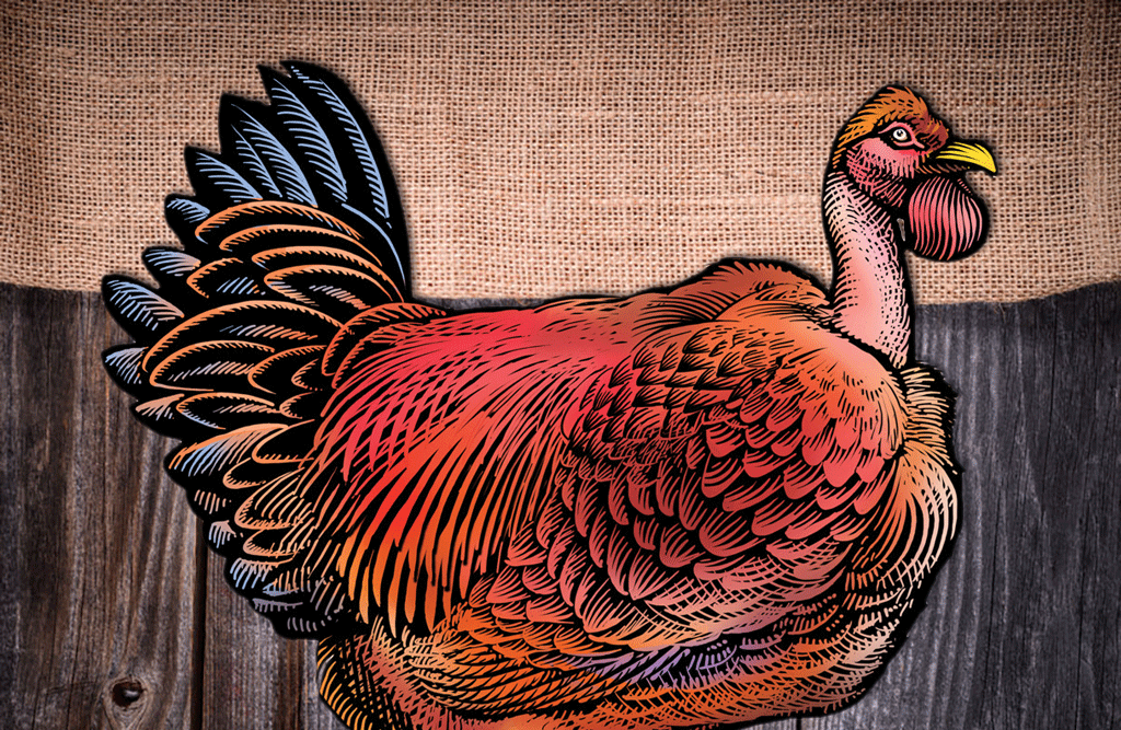 For An Extra Traditional Holiday Meal, Try This Traditional Bird