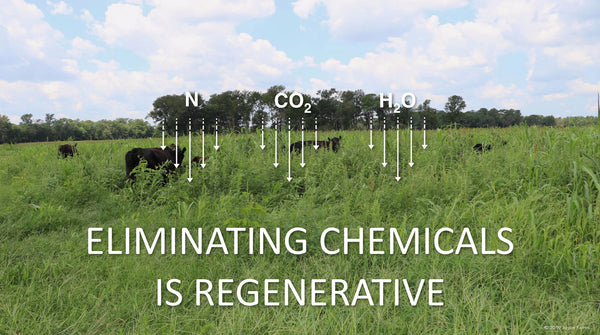Eliminating Chemicals is Regenerative