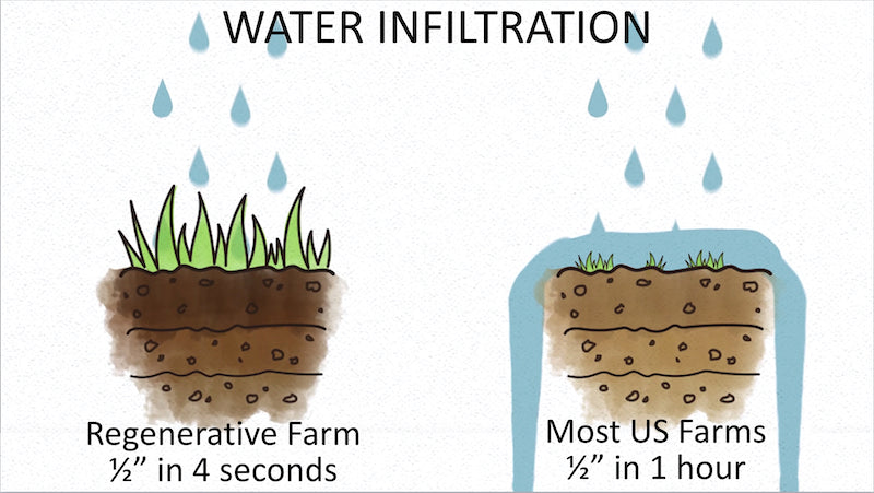 Water Infiltration Rates
