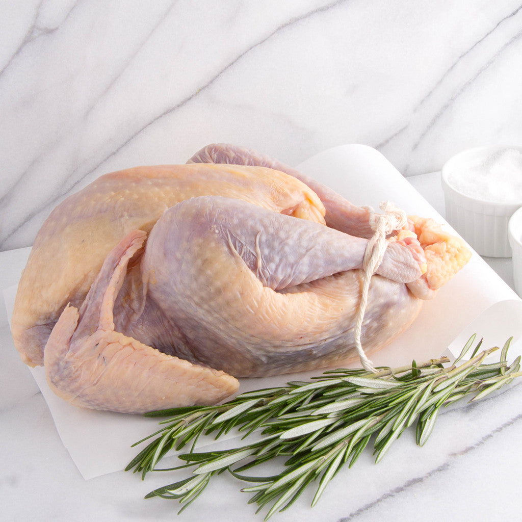 All-natural, raw heritage white pheasant from Joyce Farms, raised with no antibiotics on small family farms. Naturally flavorful, simple to prepare, and ready to cook. Available or order online for home delivery.