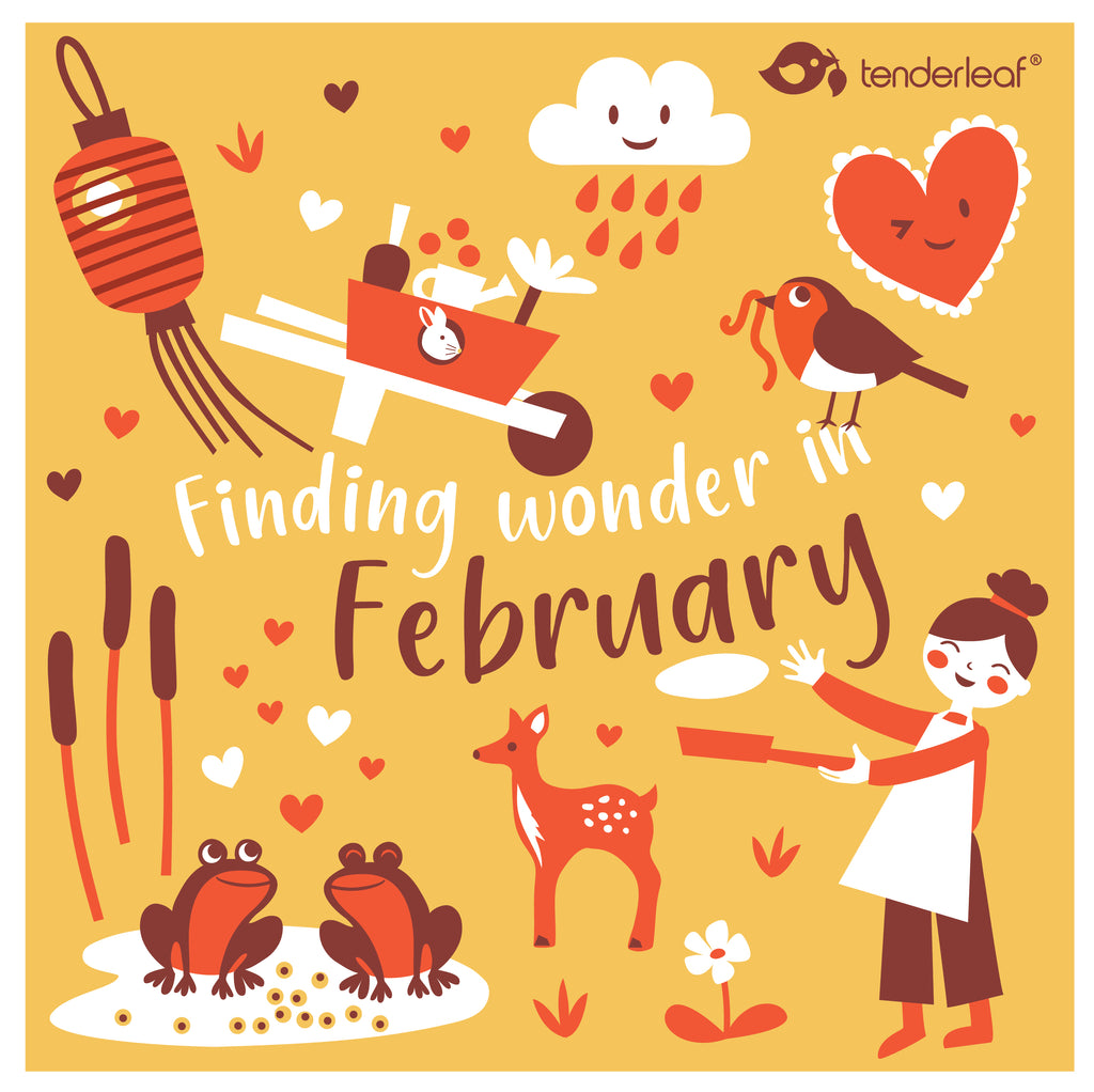 Finding Wonder in February