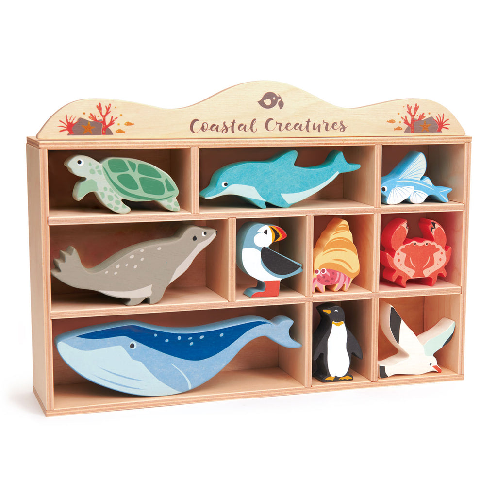 Coastal Creatures - 3 of each piece in a display stand