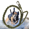 Bark Boss™ Tactical Dog Bungee Training Leash