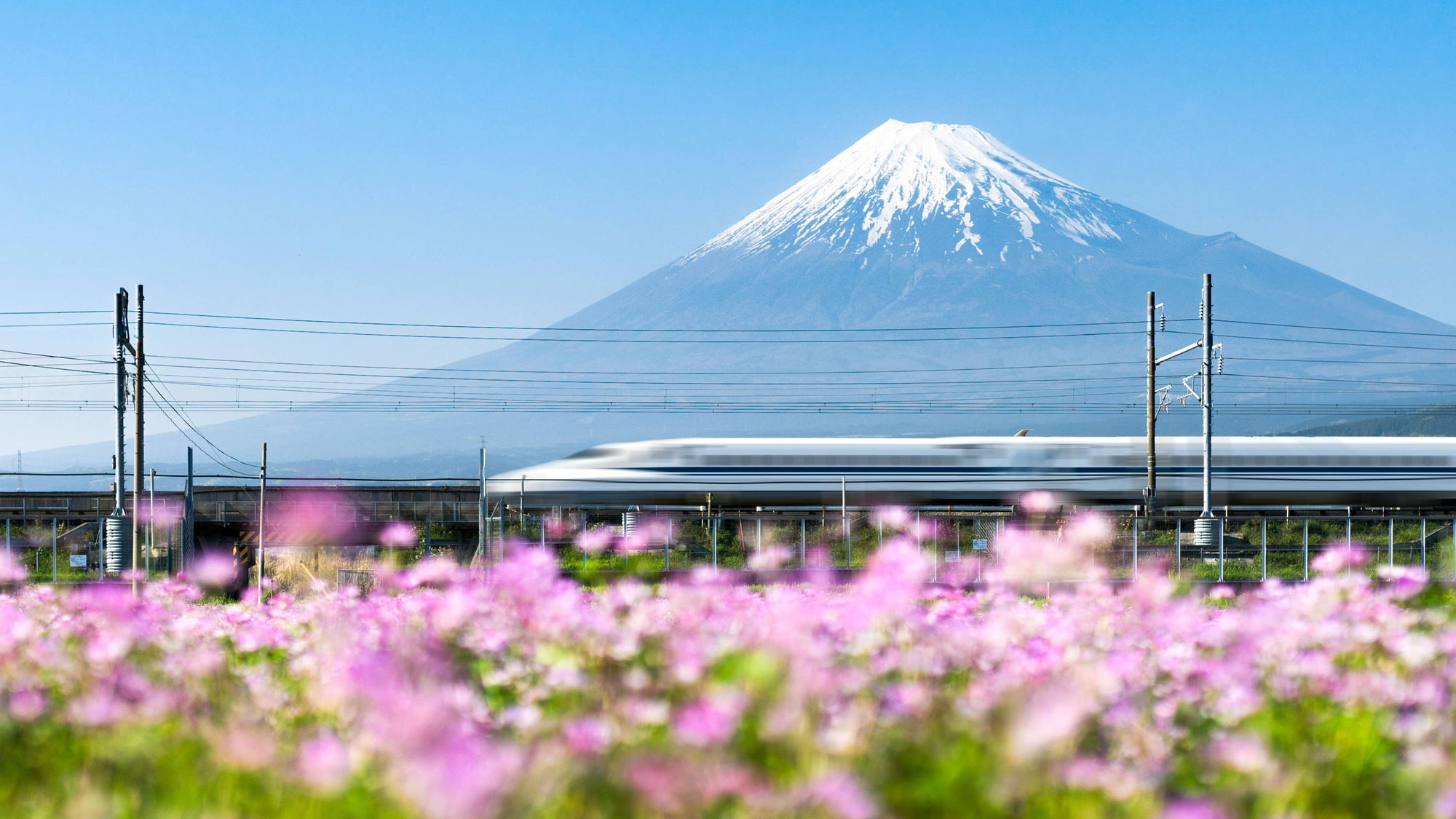 What to Do in Japan in September