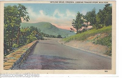 Skyline Brive,Looking toward Stony Man Peak-Virginia - Cakcollectibles