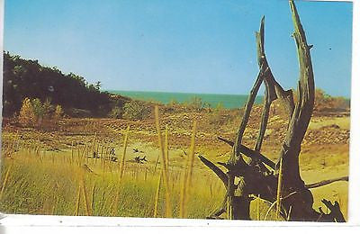 Indiana Dunes State Park, Chesterton, Indiana - Cakcollectibles