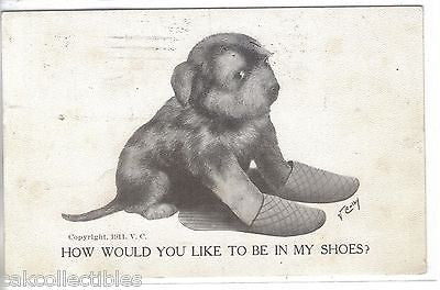 """How Would You Like To Be In My Shoes?""-Dog V.Colby 1911 - Cakcollectibles"