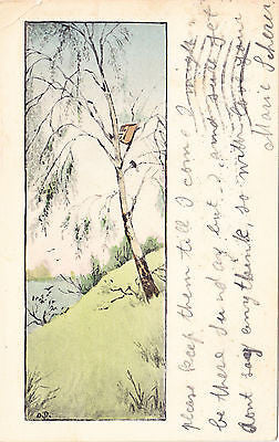 Illistration Of Meadow With Tree/Birdhouse Postcard - Cakcollectibles
