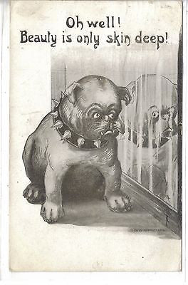 """Oh Well!Beauty is Only Skin Deep""-Bull Dog Signed Phillips 1911 - Cakcollectibles"