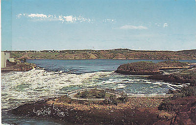 """Low Water,Reversing Falls Rapids"" Saint John,New Brunswick,Canada Postcard - Cakcollectibles - 1"