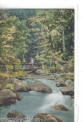 Chocorua River and Bridge-White Mts.,New Hampshire - Cakcollectibles