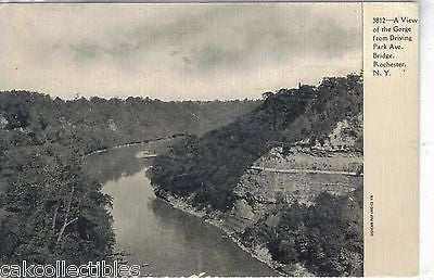 A View of The Gorge from Driving Park Ave. Bridge-Rochester,New York  UDB - Cakcollectibles
