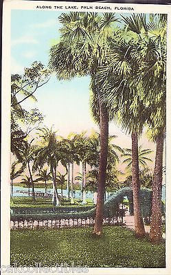 Along The Lake-Palm Peach,Florida - Cakcollectibles
