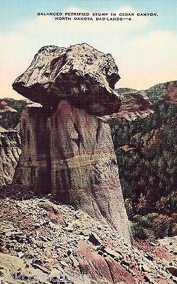 Balanced Petrified Stump in Cedar Canyon-North Dakota Bad Lands 1939 - Cakcollectibles