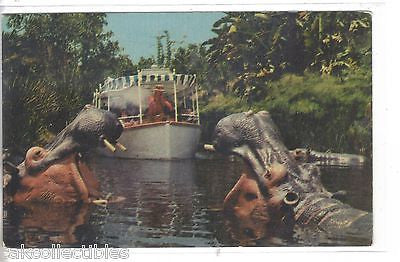 Jungle Cruise-Disneyland 1969 - Cakcollectibles