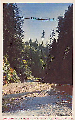Capilano Suspension Bridge - Vancouver, B. C. , Canada Postcard - Cakcollectibles - 1