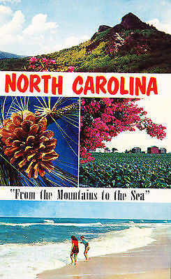 "Greetings From North Carolina ""from The Mountains To The Sea"" Postcard - Cakcollectibles"