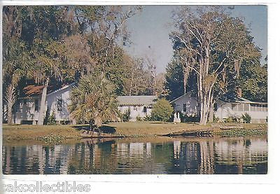 Blue Creek Lodge at the St. Johns River and Lake George-Astor,Florida - Cakcollectibles - 1