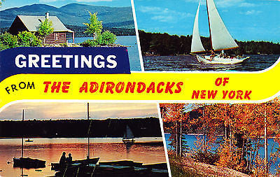 Greetings From The Anirondacks Of New York Postcard - Cakcollectibles