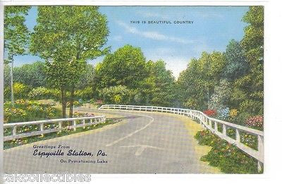 Greetings from Espyville Station,Pennsylvania on Pymatuning Lake - Cakcollectibles