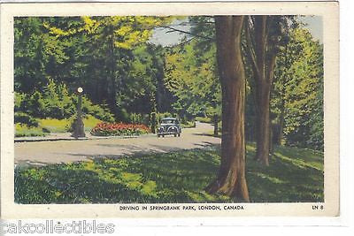 Driving in Springbank Park-London,Canada - Cakcollectibles