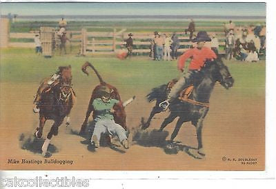 Mike Hastings Bulldogging (Linen Post Card) - Cakcollectibles