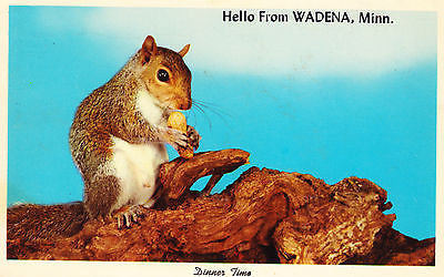 Hello From Wadena Minnesota Postcard - Cakcollectibles