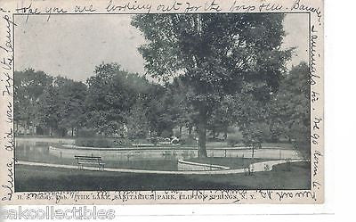The Lake,Sanitarium Park-Clifton Springs,New York  1907 - Cakcollectibles - 1