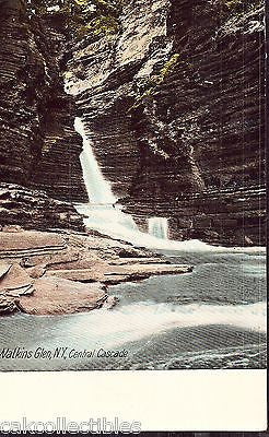 Central Cascade-Watkins Glen,New York 1906 - Cakcollectibles