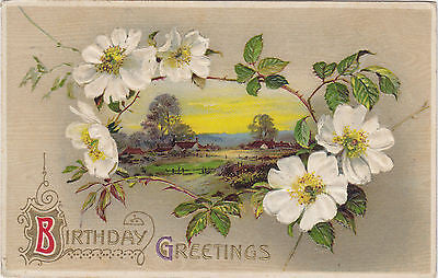 Birthday Greetings John Winsch Designed Postcard - Cakcollectibles