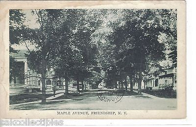 Maple Avenue-Friendship,New York 1908 - Cakcollectibles - 1