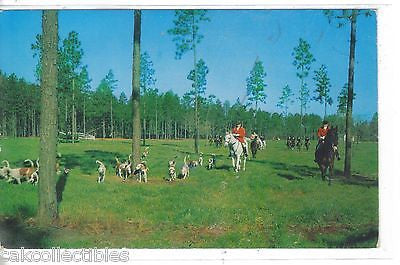 Fox Hunting with Moore County Hounds-Southern Pines,North Carolina - Cakcollectibles