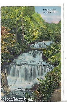 Wagner Falls in Northern Michigan 1961 - Cakcollectibles