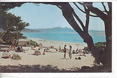 View of Carmel Beach-Carmel,California Vintage Postcard Front