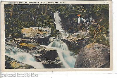 Beecher's Cascade,Crawford Notch-White Mts.,New Hampshire - Cakcollectibles