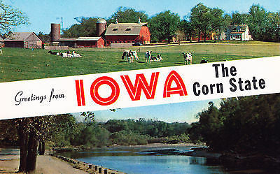 Greetings From Iowa The Corn State Postcard - Cakcollectibles