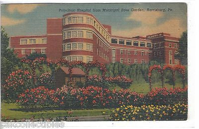 Polyclinic Hospital from Municipal Rose Garden-Harrisburg,Pennsylvania - Cakcollectibles - 1