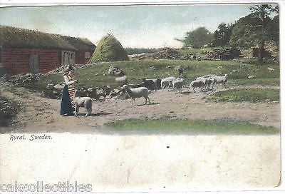 Early Post Card-Rural Sweden 1910 (Woman with Sheep) - Cakcollectibles
