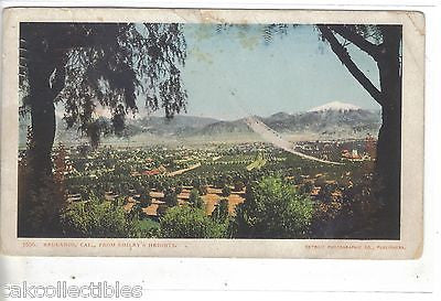 View of Redlands,California from Smiley's Heights 1905 - Cakcollectibles - 1