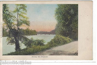Along The Passaic 1908 - Cakcollectibles