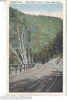 Mohawk Trail-White Birch Curve in Cold River Glen - Cakcollectibles