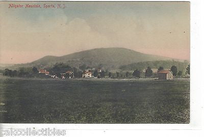Alligator Mountain-Sparta,New Jersey - Cakcollectibles
