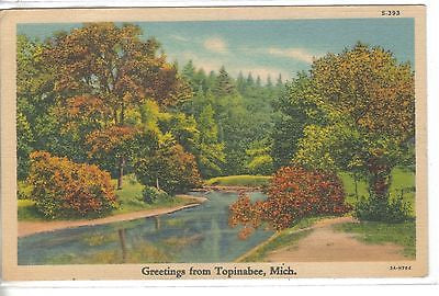 Greetings from Topinabee,Michigan 1939 postcard front