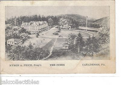 The Pines-Canadensis,Pennsylvania - Cakcollectibles - 1
